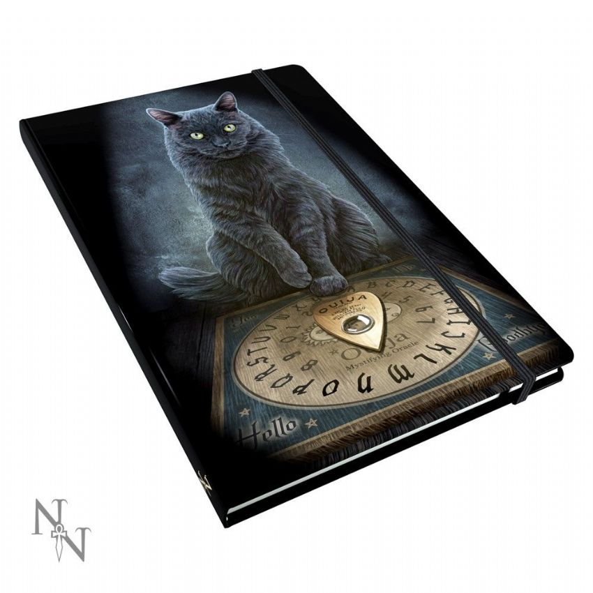 Journal~ Lisa Parker Blank Journal Diary His masters Voice~ By Folio Gothic Hippy B1566E5